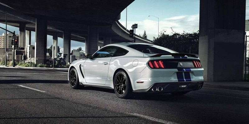 2019 Ford Mustang EcoBoost Premium with Black Accent Package.